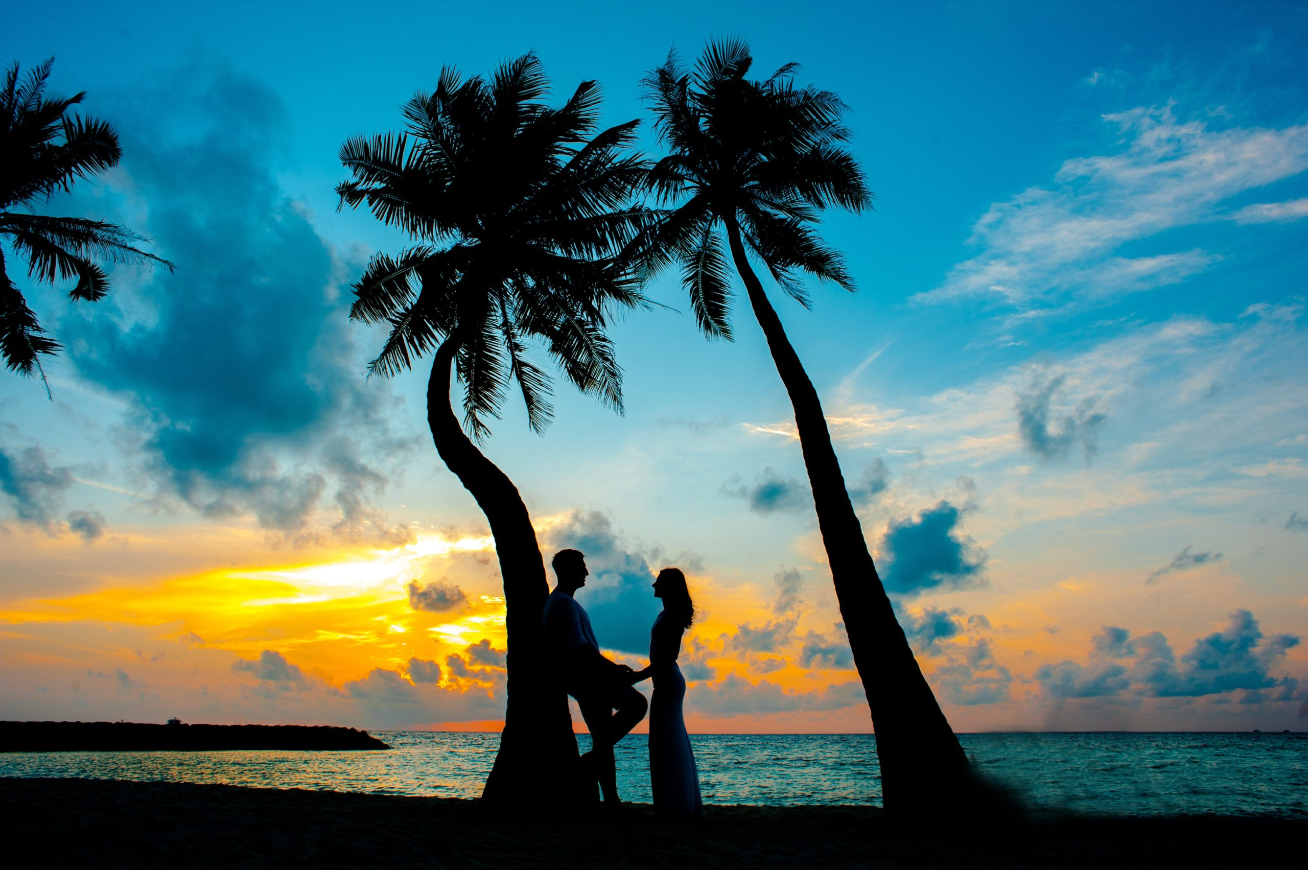 silhouette-photo-of-male-and-female-under-palm-trees-1024981