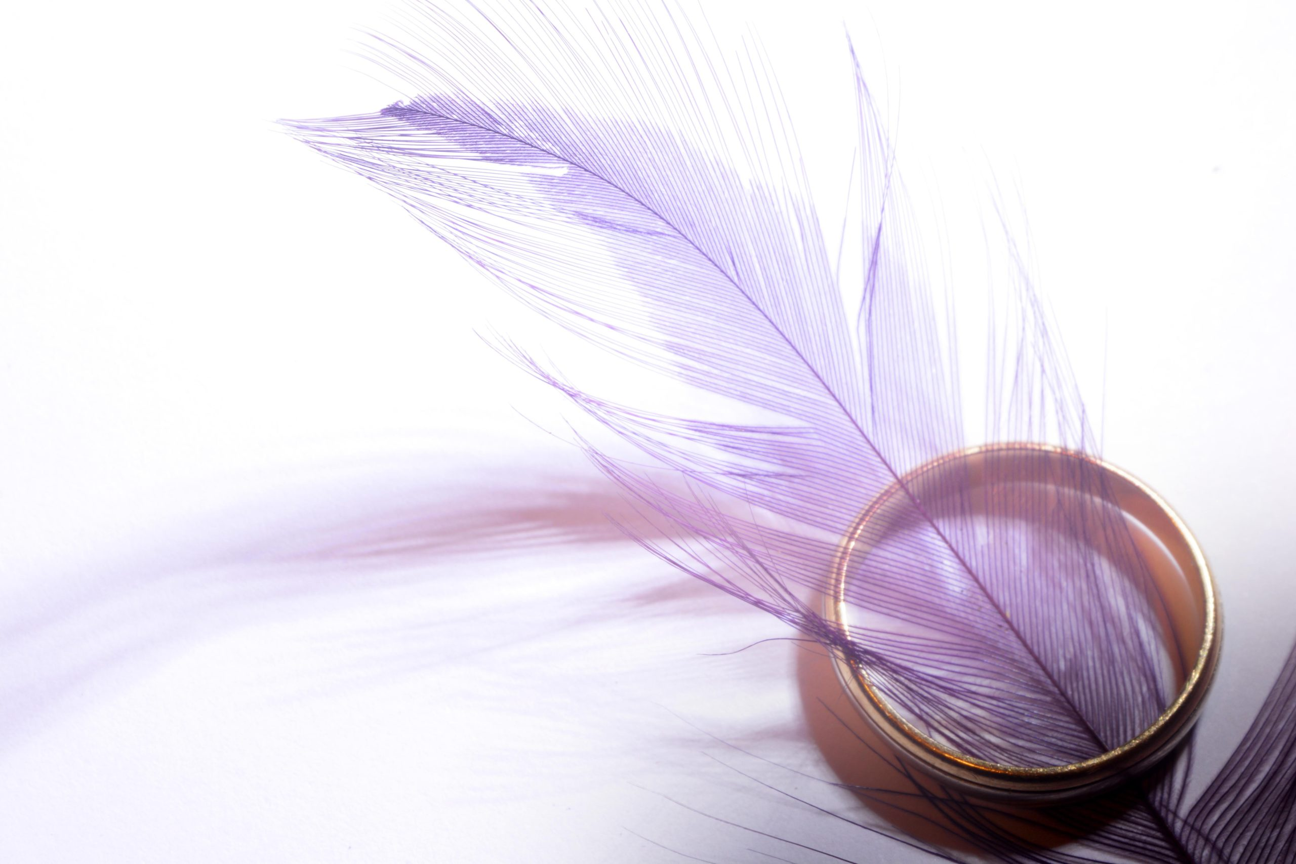 wedding-ring-feathers-closeup-9798
